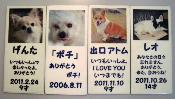 ブログ用 (3)